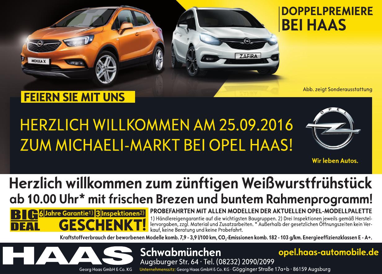 Georg Haas GmbH & Co. KG